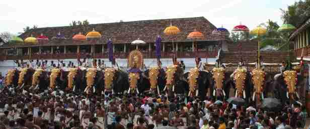 thrippunithura-elephants8_crop