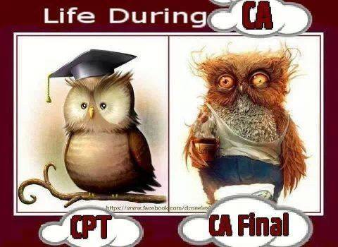 Life of A CA Student