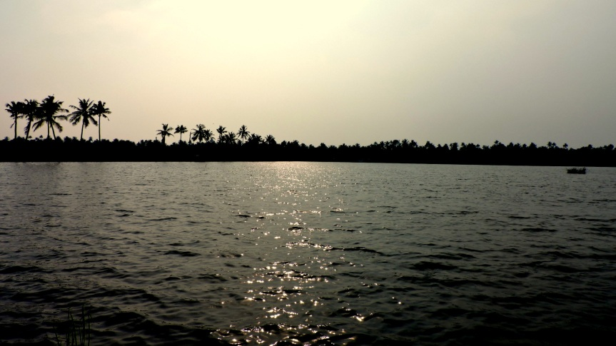Coconut trees and backwaters - True essence of Kerala